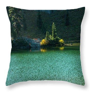 Fall Afternoon On Sheep Lake Throw Pillow