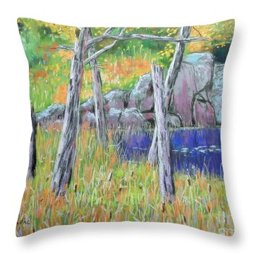 Fall  Along The Highwy  Throw Pillow