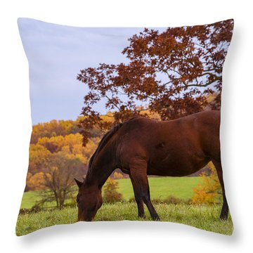 Fall And A Horse Throw Pillow by Rima Biswas