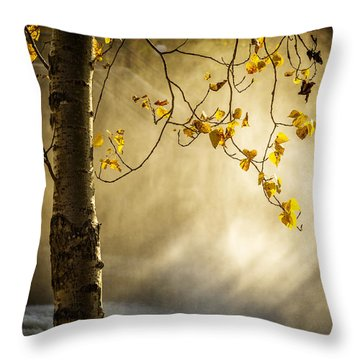 Fall And Fog Throw Pillow