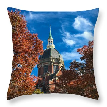 Fall And The Dome Throw Pillow by Mark Dodd