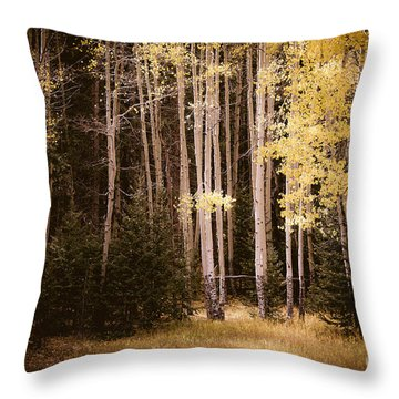 Fall Aspen Meadow Throw Pillow