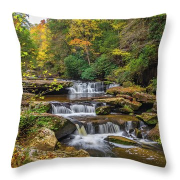Fall At Bark Camp Creek Throw Pillow