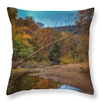 Fall At Barkers Gap Throw Pillow