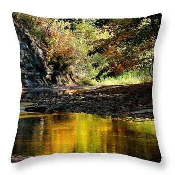 Fall At Big Creek Throw Pillow