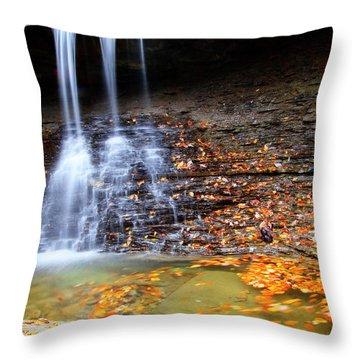 Fall At Blue Hen Falls Throw Pillow