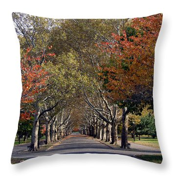 Fall At Corona Park Throw Pillow
