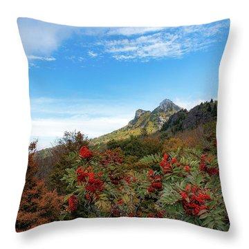 Fall At Grandfather Mountain Throw Pillow