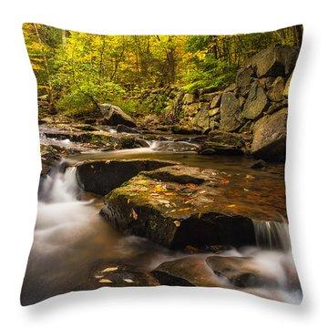 Fall At Gunstock Brook Throw Pillow