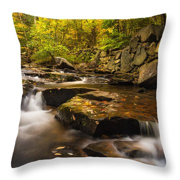 Throw Pillow featuring the photograph Fall At Gunstock Brook by Robert Clifford