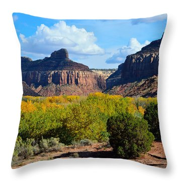 Fall At Indian Creek Throw Pillow