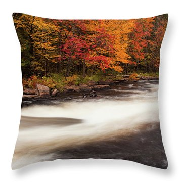 Fall At Oxtongue Rapids Throw Pillow