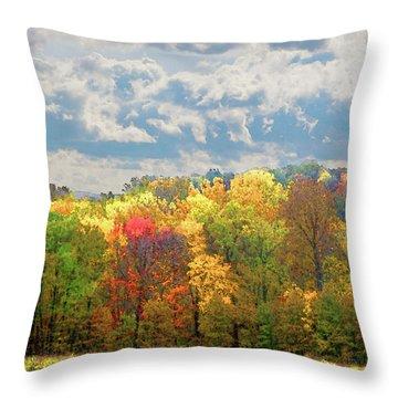 Fall At Shaw Throw Pillow