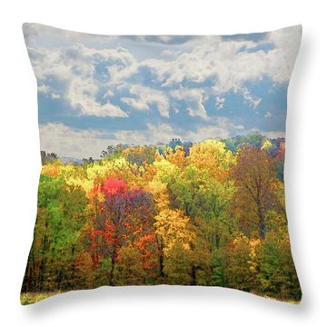 Fall At Shaw Throw Pillow