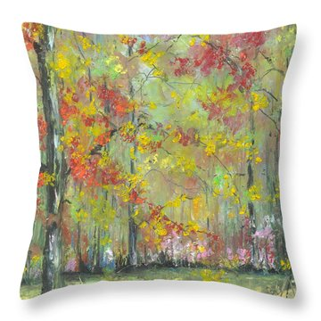 Fall At The Buffalo River National State Park Throw Pillow by Robin Miller-Bookhout