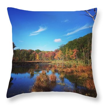 Fall At The Pond Throw Pillow by Jason Nicholas
