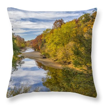 Fall At Turkey Run State Park Throw Pillow by Alan Toepfer