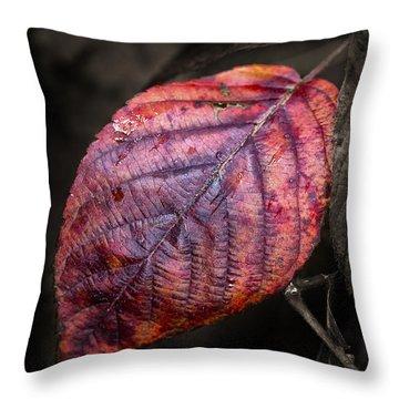 Fall Beech Leaf Throw Pillow