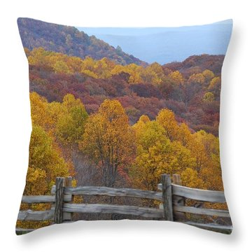 Fall Blend Throw Pillow by Eric Liller