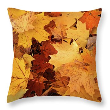 Fall Carpet 10 Throw Pillow
