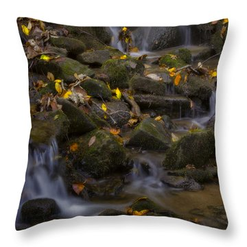 Throw Pillow featuring the photograph Fall Cascades by Ellen Heaverlo
