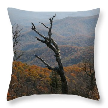 Fall Throw Pillow by Cathy Harper