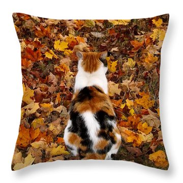 Fall Catitude  Throw Pillow by Christy Ricafrente
