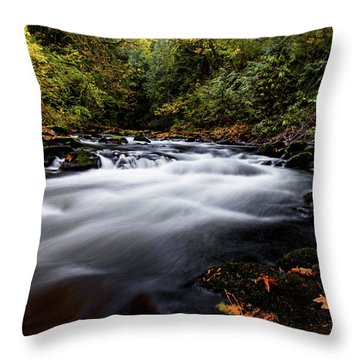 Fall Color At Cedar Creek Throw Pillow