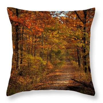 Throw Pillow featuring the photograph Fall Color At Centerpoint Trailhead by Michael Dougherty