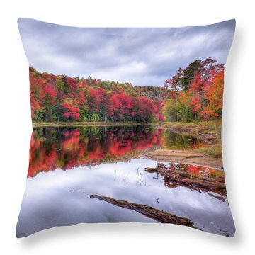 Throw Pillow featuring the photograph Fall Color At The Pond by David Patterson