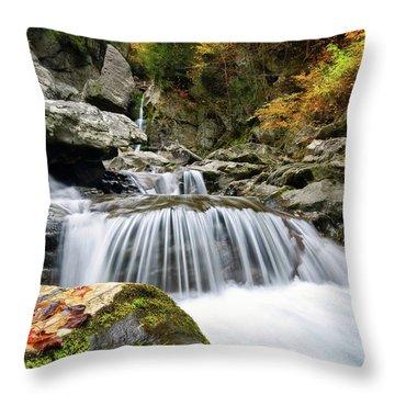 Fall Color Bash Throw Pillow