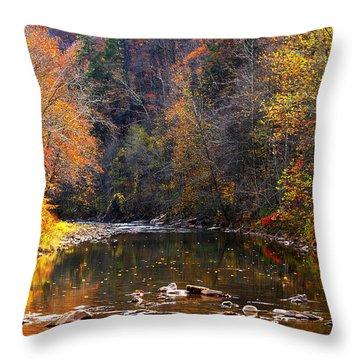 Fall Color Elk River Throw Pillow by Thomas R Fletcher