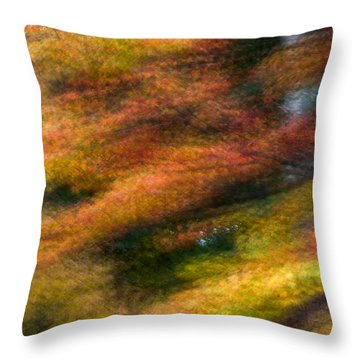 Throw Pillow featuring the photograph Fall Color Impressions by Kevin Blackburn