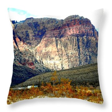 Fall Color In The Winter Season Throw Pillow