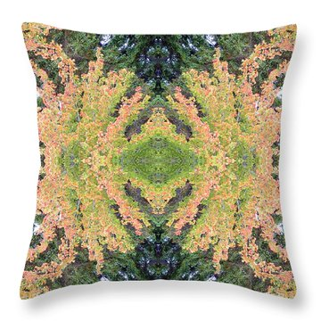 Throw Pillow featuring the photograph Fall Color Kaleidoscope by Bill Barber
