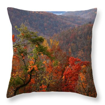 Throw Pillow featuring the photograph Fall Color Ponca Arkansas by Michael Dougherty