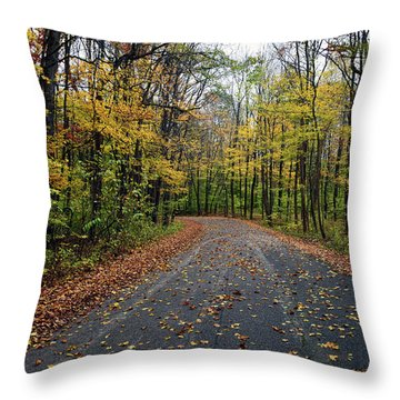 Fall Color Series 2016 Throw Pillow