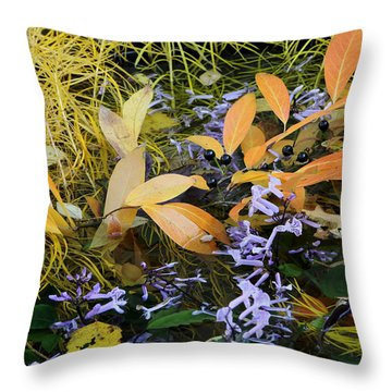 Throw Pillow featuring the photograph Fall Color Soup by Deborah  Crew-Johnson