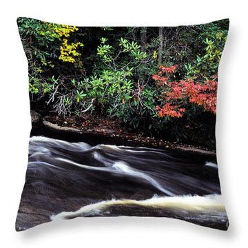 Fall Color Swallow Falls State Park Throw Pillow by Thomas R Fletcher