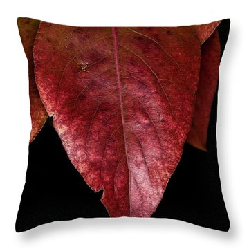 Throw Pillow featuring the photograph Fall Colors 3 by James Sage