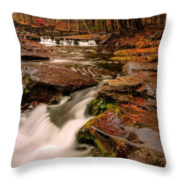 Fall Colors Around The Stream Throw Pillow