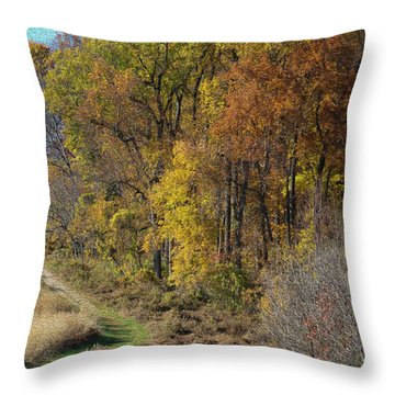 Fall Colors As Oil Throw Pillow