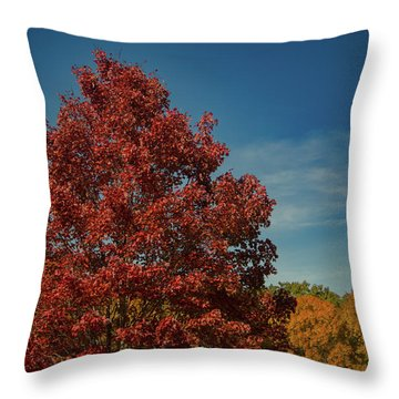 Throw Pillow featuring the photograph Fall Colors, Ashville, Nc by Richard Goldman