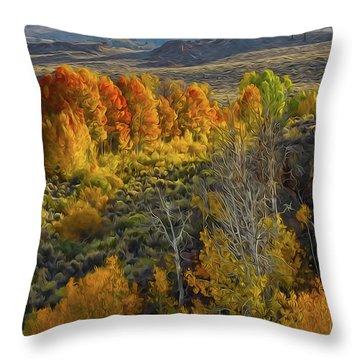Fall Colors At Aspen Canyon Throw Pillow