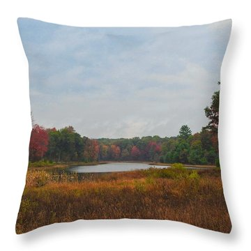 Fall Colors At Gladwin 4459 Throw Pillow