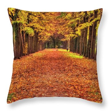 Fall Colors Avenue Throw Pillow