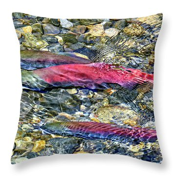 Throw Pillow featuring the photograph Fall Colors by David Lawson