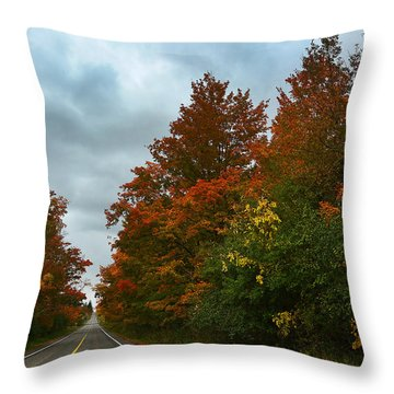 Fall Colors Dramatic Sky Throw Pillow