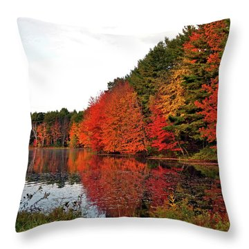 Fall Colors In Madbury Nh Throw Pillow