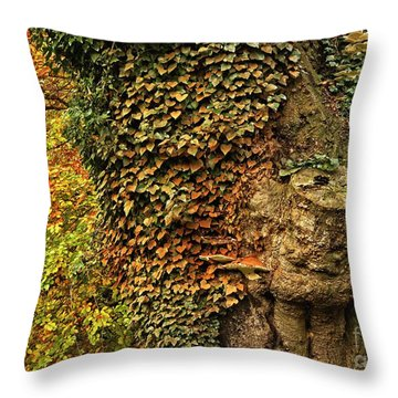 Fall Colors In Nature Throw Pillow